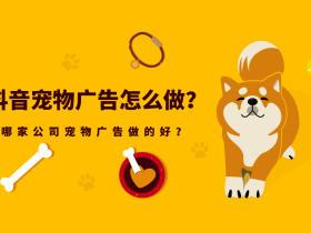 抖音宠物广告怎么做?哪家公司宠物广告做的好?