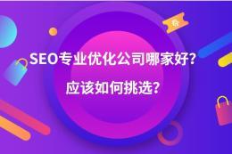 SEO专业优化外包公司哪家好?应该如何挑选?