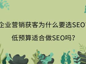 企业营销获客为什么要选SEO?低预算适合做SEO吗?