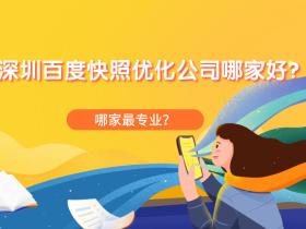 深圳百度快照优化公司哪家好?哪家最专业?