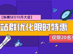 【10月大促】纵横SEO站群优化限时特惠,仅限20名!